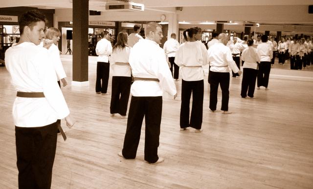 martial arts birmingham