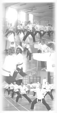 Goyararu Martial Arts Training